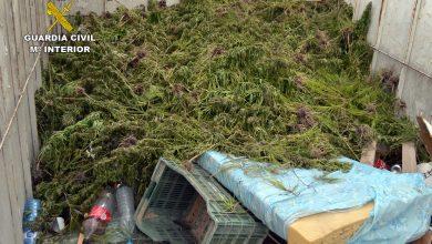 Photo of Un camión cargado de marihuana arrolla un coche de la Guardia Civil en su huida por la autovía