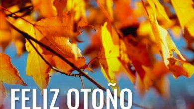 Photo of El otoño se abre paso: las temperaturas caerán siete grados entre viernes y sábado