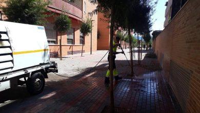 Photo of Javalí Nuevo tiene una tasa de afectados por Covid más alta que la Comunidad de Madrid