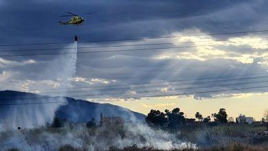 Photo of El incendio de un cañal del río en Rincón de Seca moviliza a bomberos y helicóptero de Emergencias