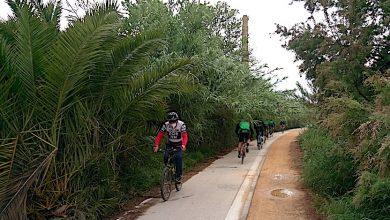 Photo of Las cañas invaden parte del recorrido del carril bici