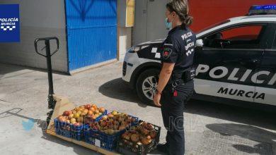 Photo of Decomisan 140 kilos de granadas de procedencia dudosa en el mercado de El Puntarrón