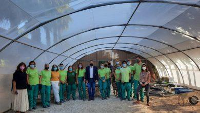 Photo of Catorce alumnos del programa de empleo en jardinería hacen prácticas en el Museo de la Huerta