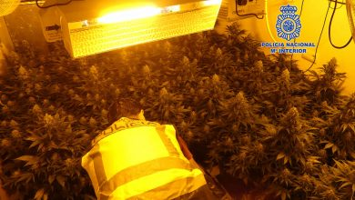 Photo of Desmantelan otros cuatro narcopisos en el 'bloque de la marihuana' de la carretera de Barqueros